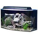 SeaClear Bowfront Aquarium Combo (15