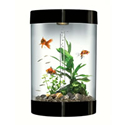 biUbe Aquarium Kit (Black; Acrylic)