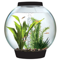 baby biOrb Aquarium Kit with Light (12